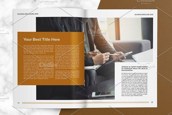Business Brochure V805