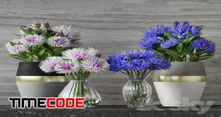 cornflower-set