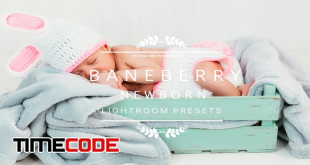 2536317-BANEBERRY-Newborn-Lightroom-Presets