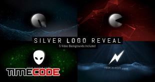 Silver Logo Reveal