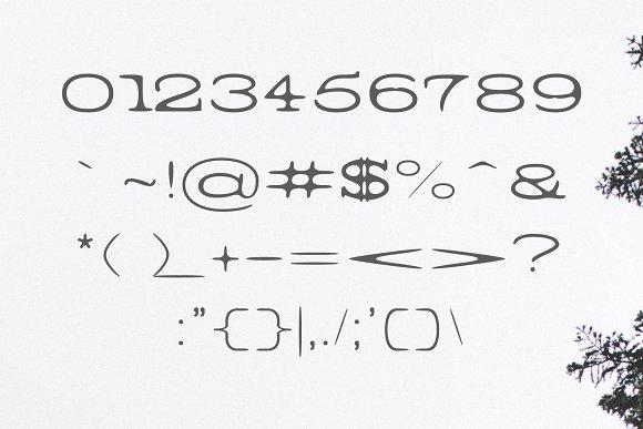 Barric A Serif Font Family