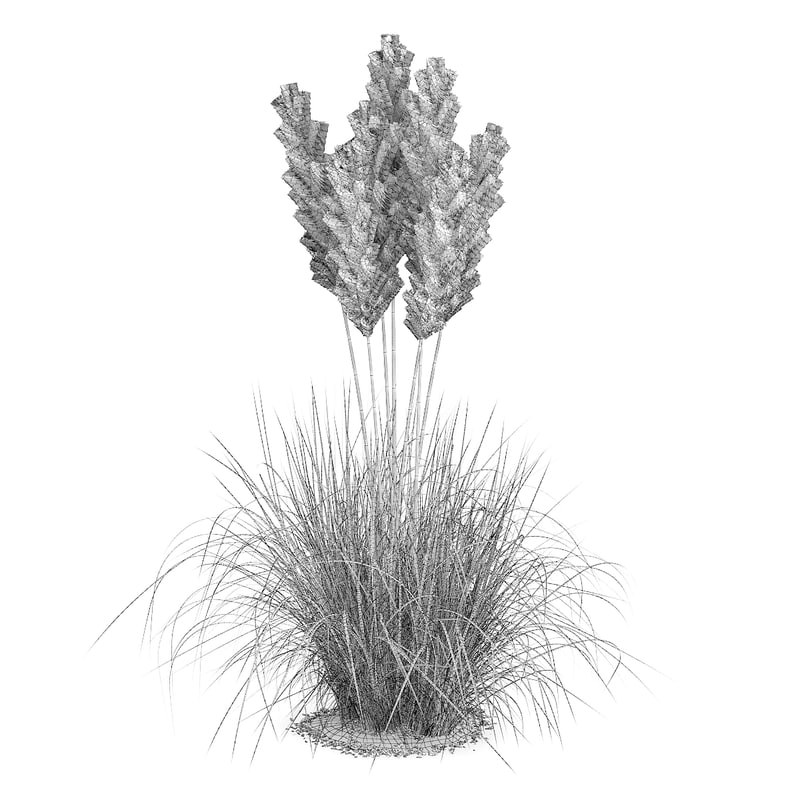 CGAxis Models Volume 66 Garden Plants II