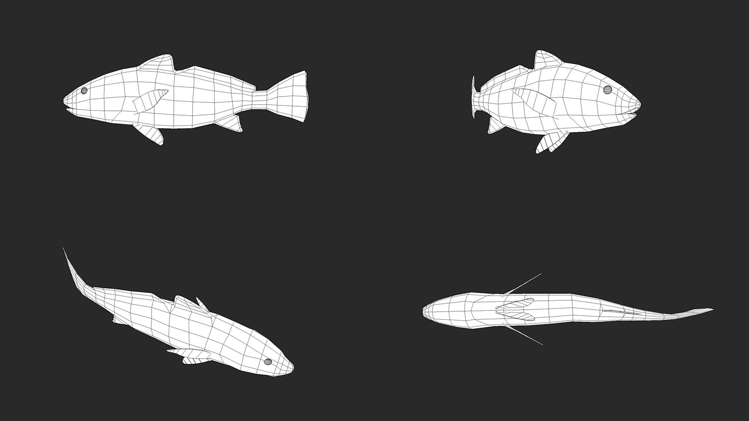 Low poly Fish Collection Animated Pack 2