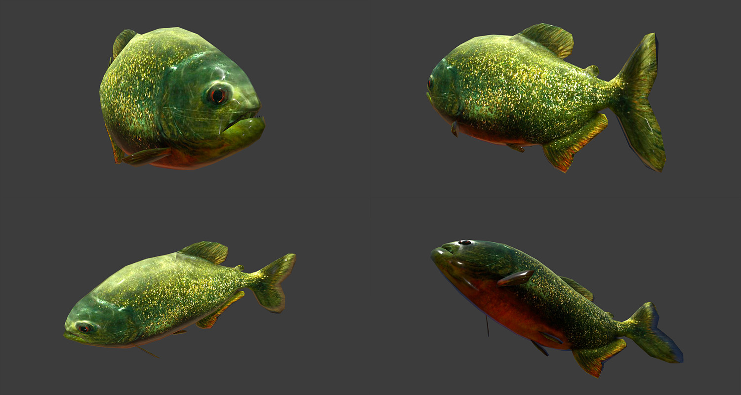 Low poly Fish Collection Animated Pack 3