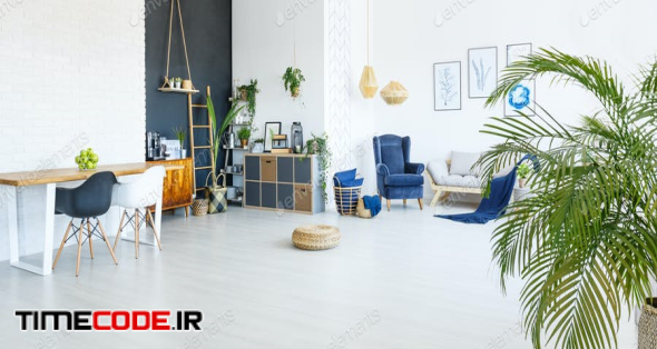 Studio Apartment Interior